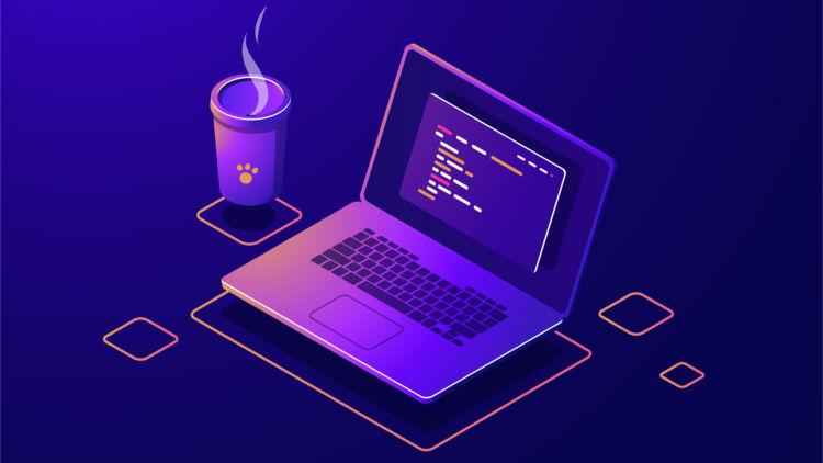 Cara Menjadi Programmer Pemula
